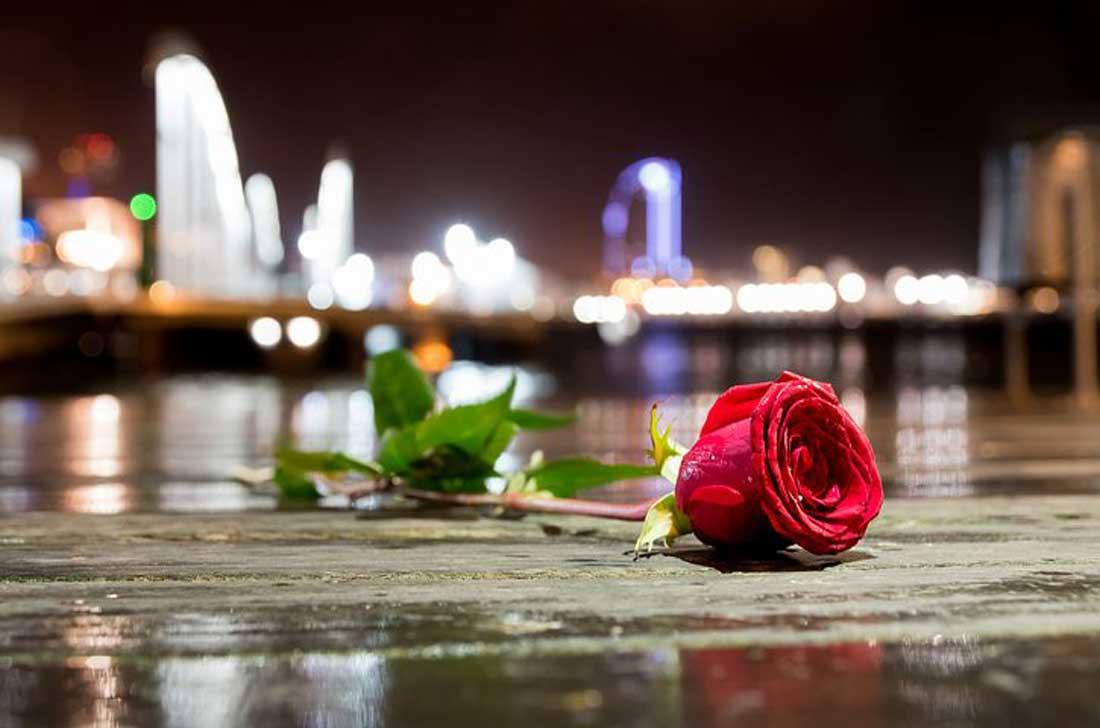 ורד בברצלונה
